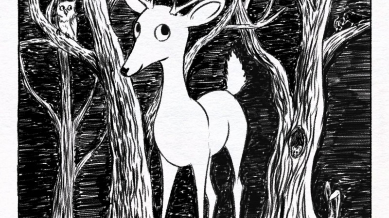 A deer in the forest