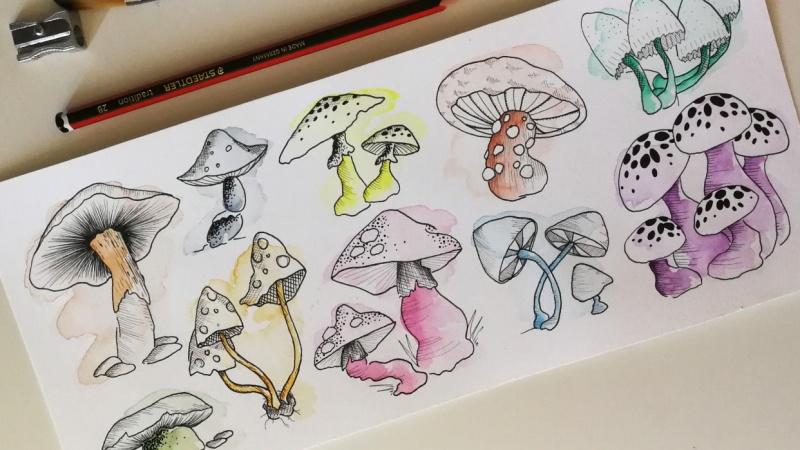 I am 100 mushrooms