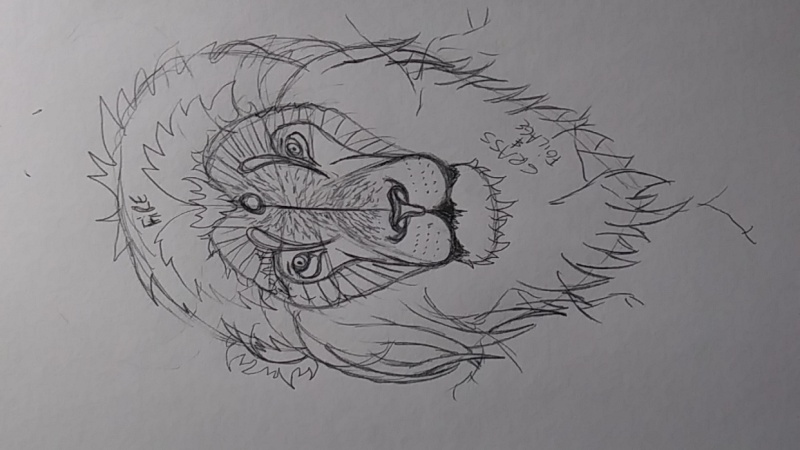 Stylized Lion Part 1