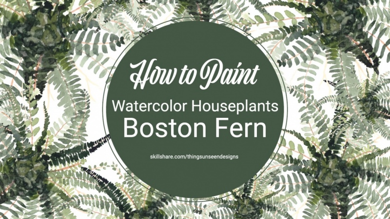 Boston Fern plant project