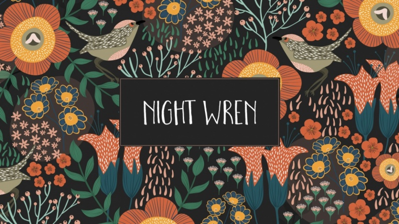 Night Wren