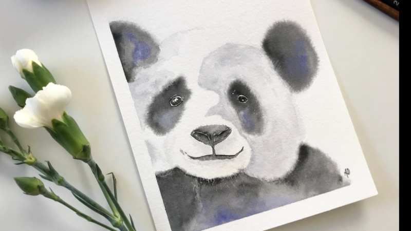 Fluffy watercolor animals
