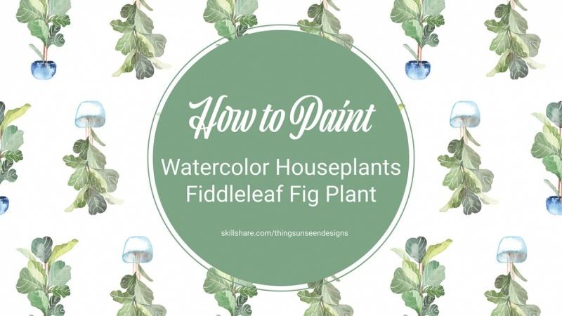 Fiddleleaf Fig Plant project