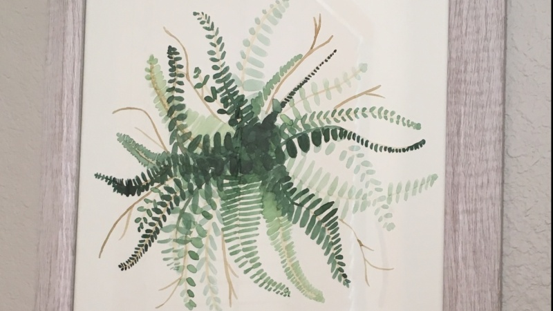 Boston Fern - I thought it was good enough for my wall! :)
