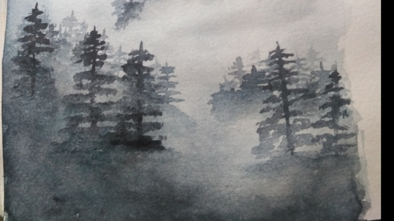 misty pines forest