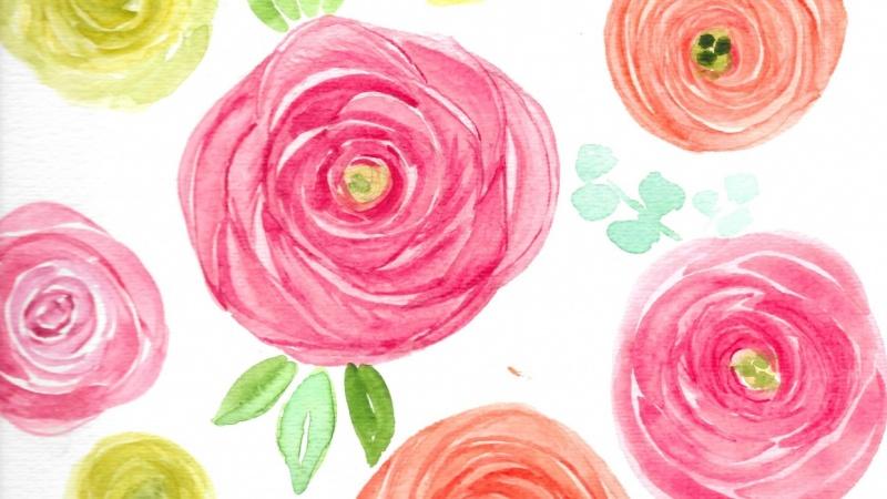 Ranunculus - Three Ways
