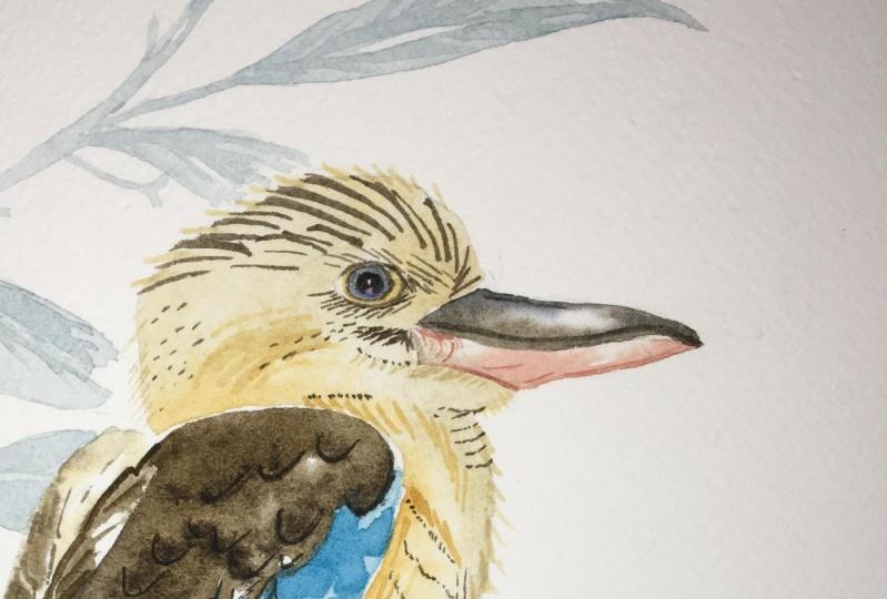 My Watercolor Birds