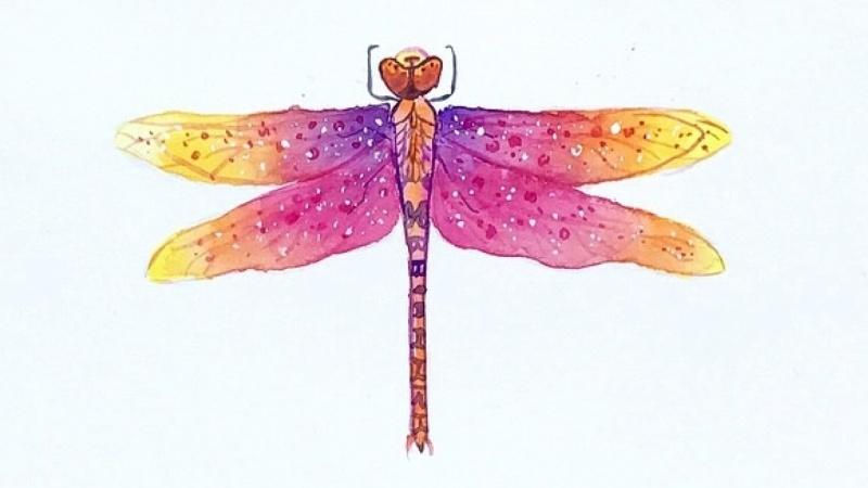Vibrant Magical Dragonflies