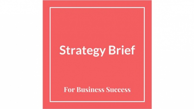 Jennifer Bui's Strategy Brief