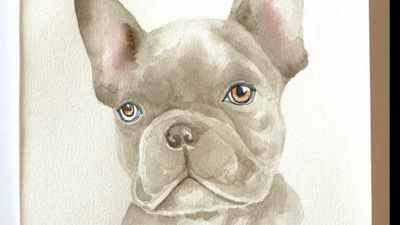 Realistic Watercolor Frenchie