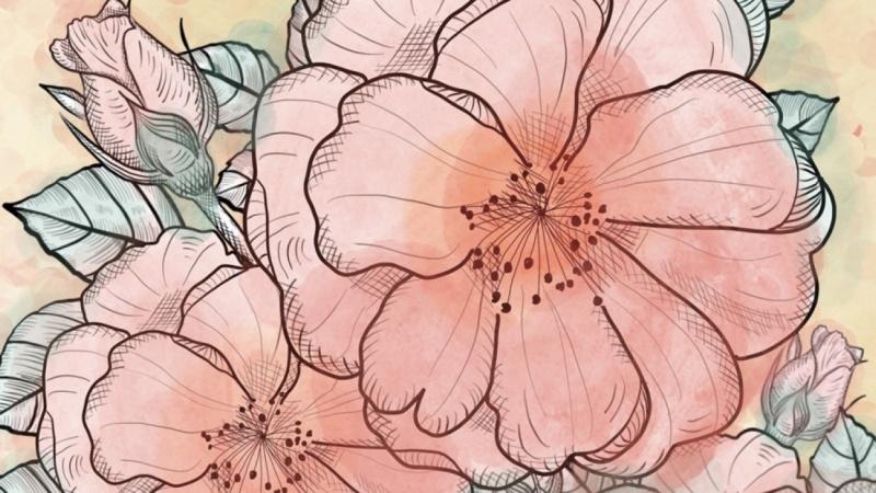 Botanical Rose Collage