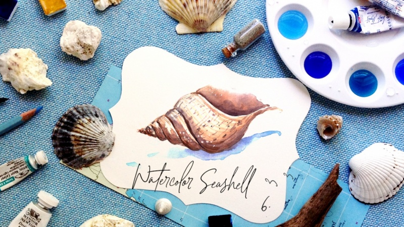 Watercolor Seashell {Sample Project}