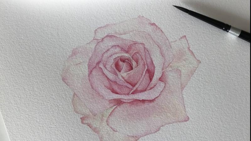 Rose based on the teaching of Louise Demasi