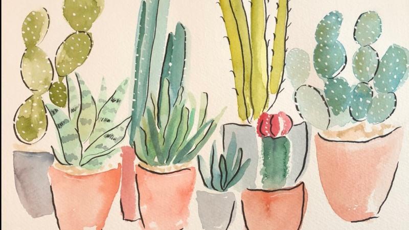 Watercolor & ink Cacti