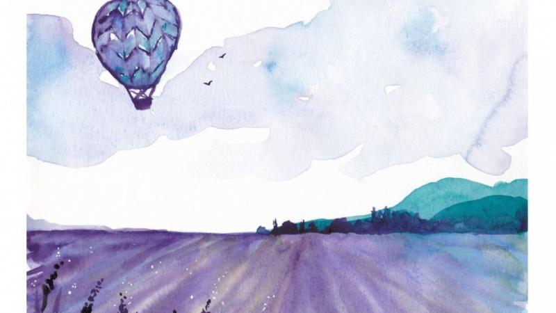 Hot air balloon over vineyard