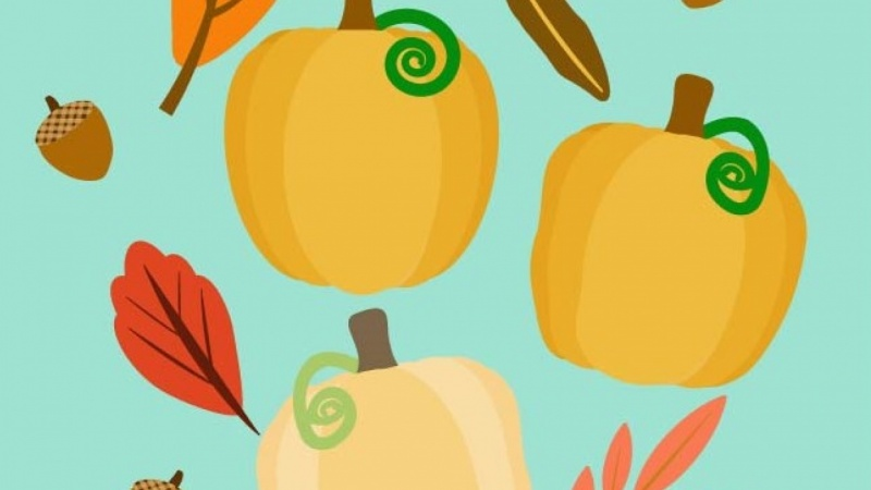 Pumpkins and leaves and acorns - oh my!