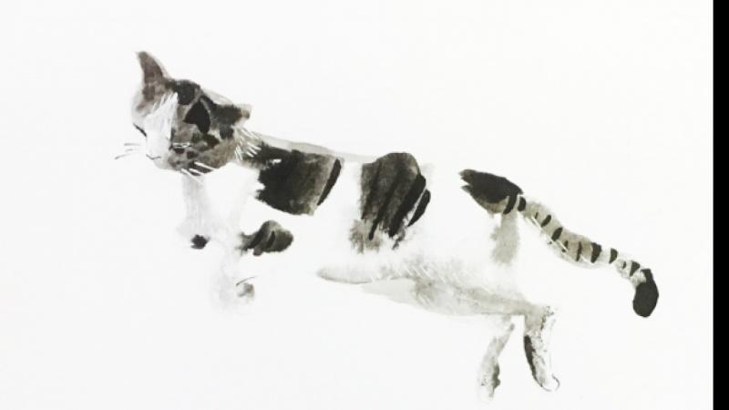 Inky Cat 1