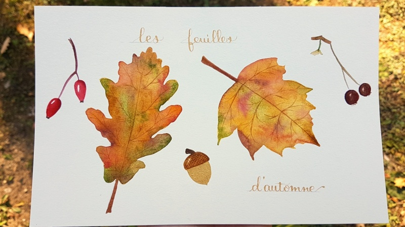 Autumn leaves and Pumpkins