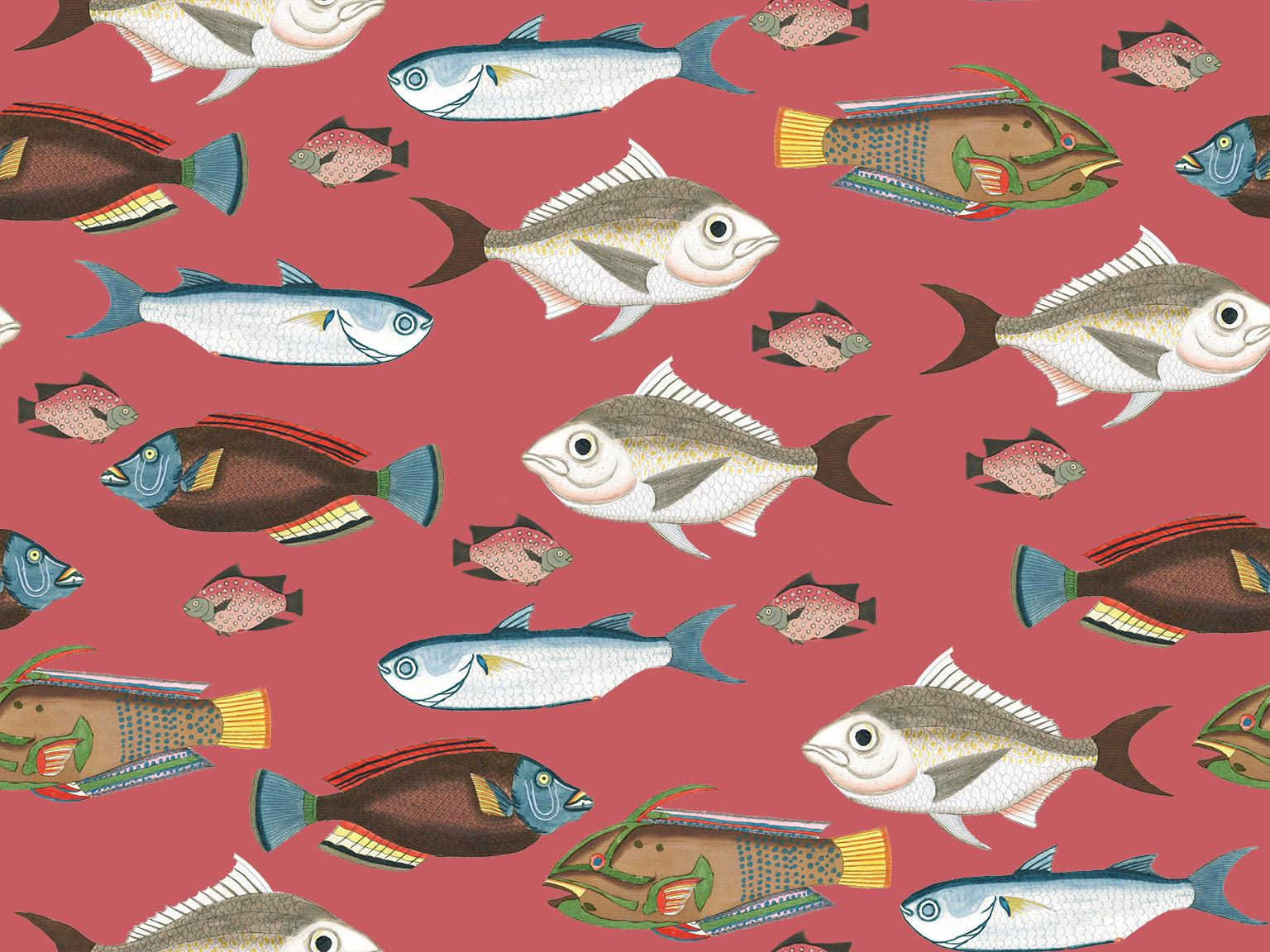 Colourful Fish   Skillshare Projects