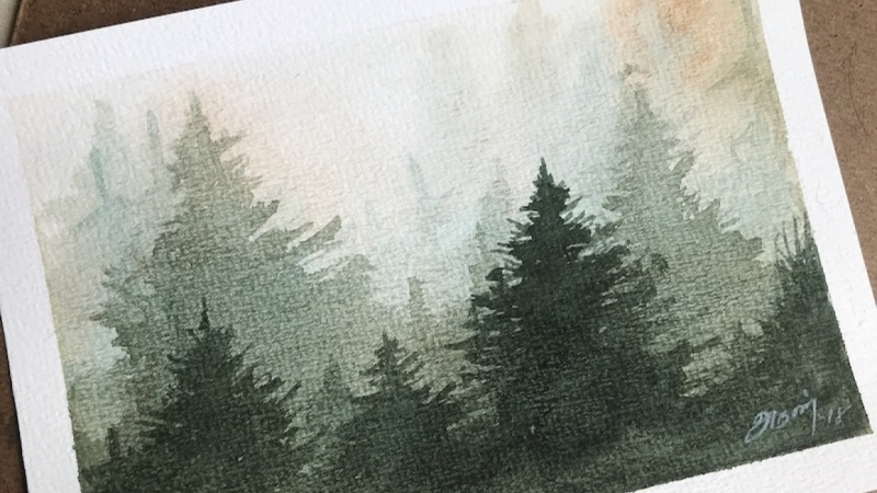 PROJECT: Misty Pine Trees