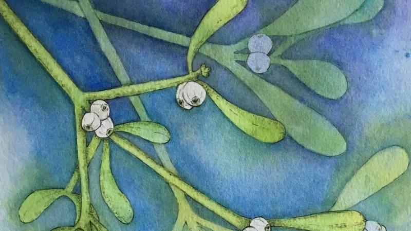Mistletoe - Negative Painting