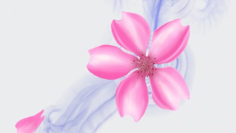 Cherry Blossom basic Painting