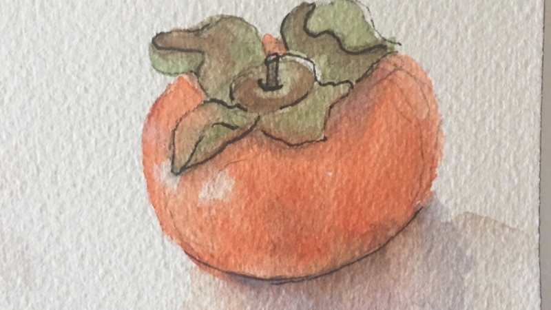 Mary's Persimmon Cookies