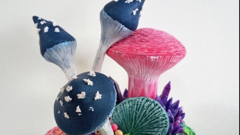Mushrooms and crystals