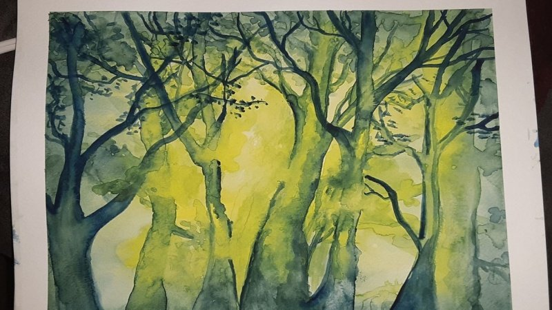 Watercolor Forest Scene with Depth & Light