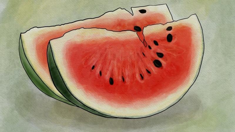 Juicy Watermelon Slices