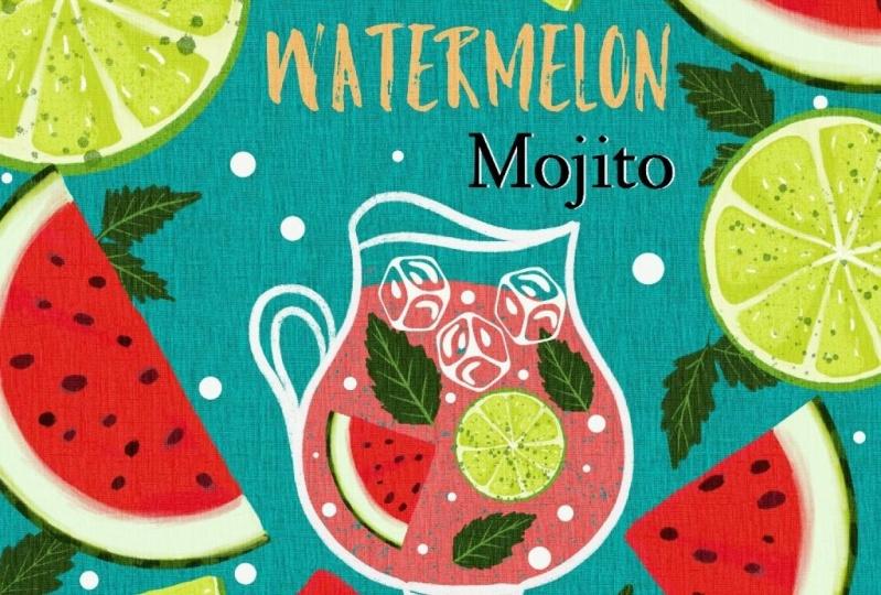 Watermelon Mojito Recipe Illustration