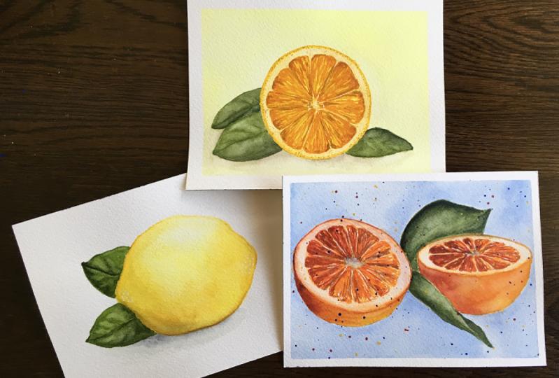 Citrus Fruit Study