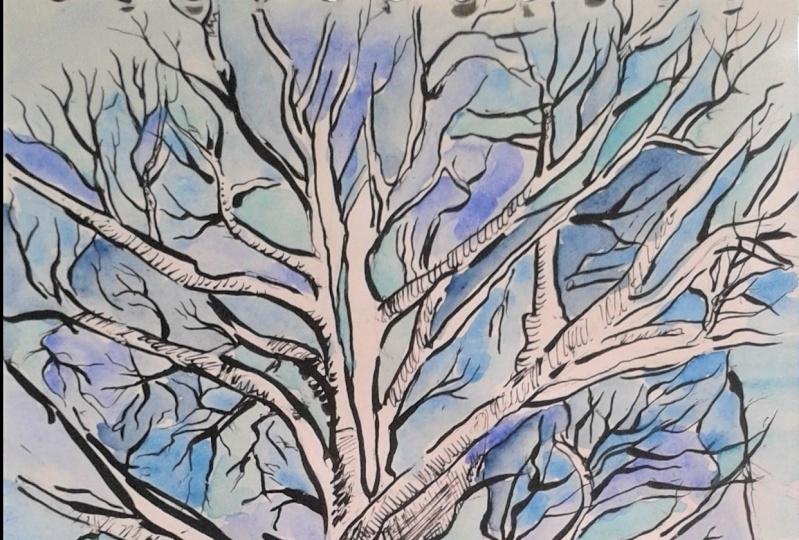 Winter explorations...