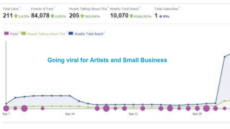 Facebook Marketing for Artists and Small Businesses