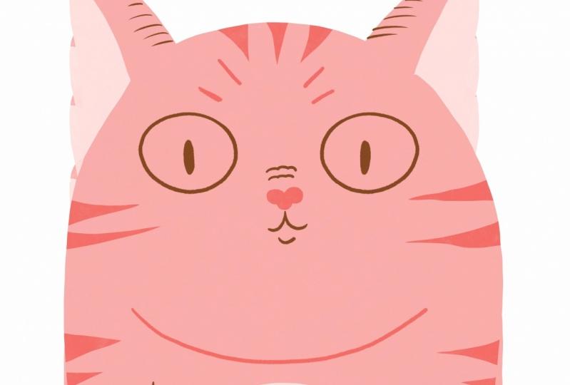 My Pink Cat!