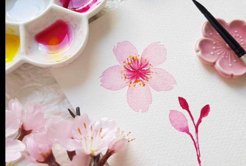 Single Cherry Blossom Flower
