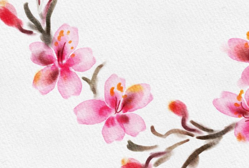 Watercolour in Procreate app