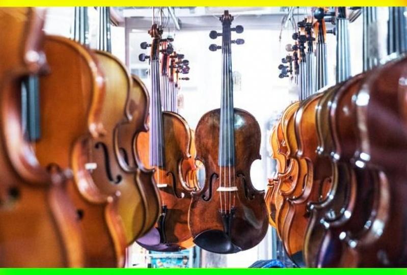 Beginner Violin Project