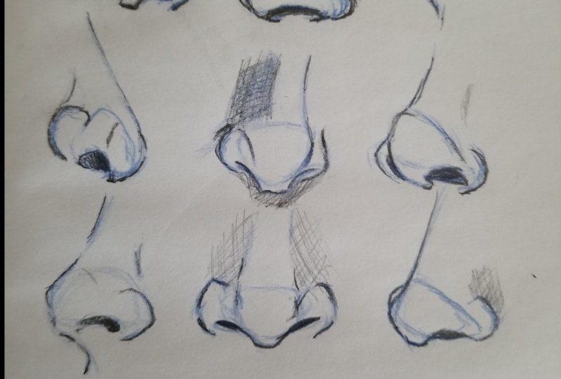 Practicing noses