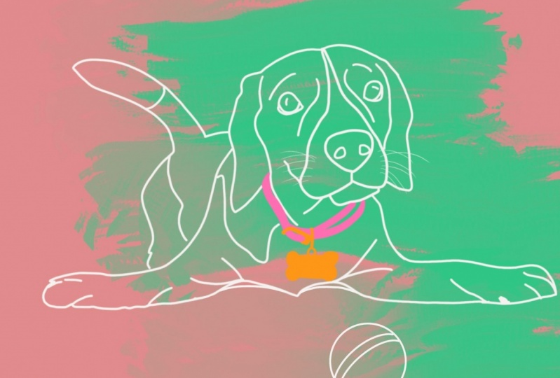 #1 draw a dog #3 face and an accessory