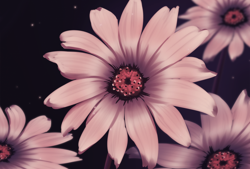 #2 Palette and #3 Favorite Flower