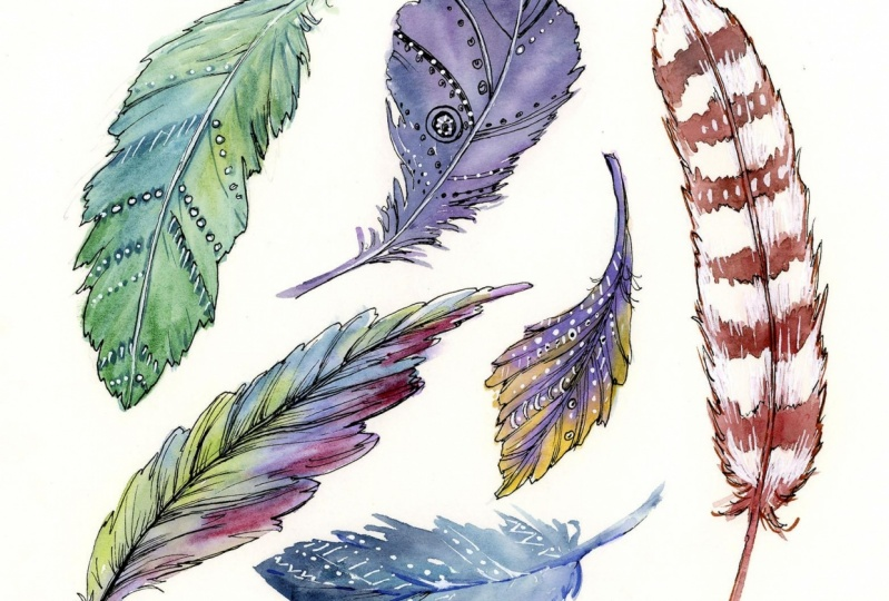 sketchbook: watercolor feathers w/pen and ink