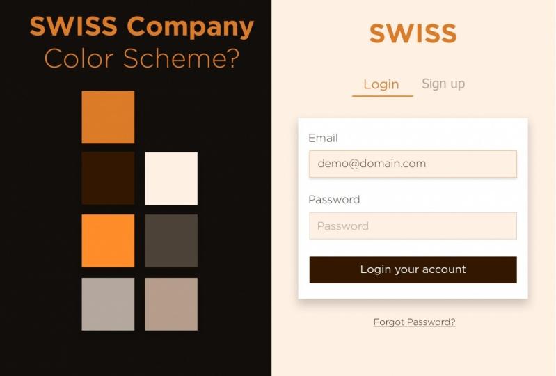 Swiss Company Login screen and monochromatic color scheme