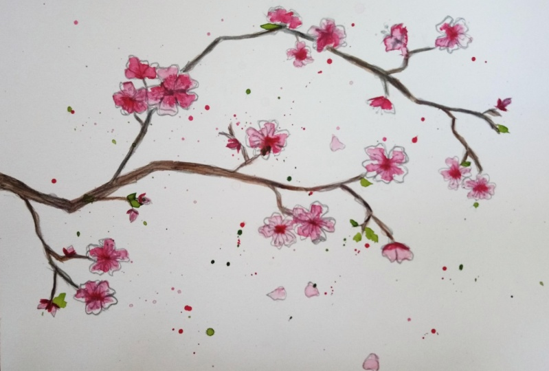 Sakura (first ever attempt and new to watercolour!)
