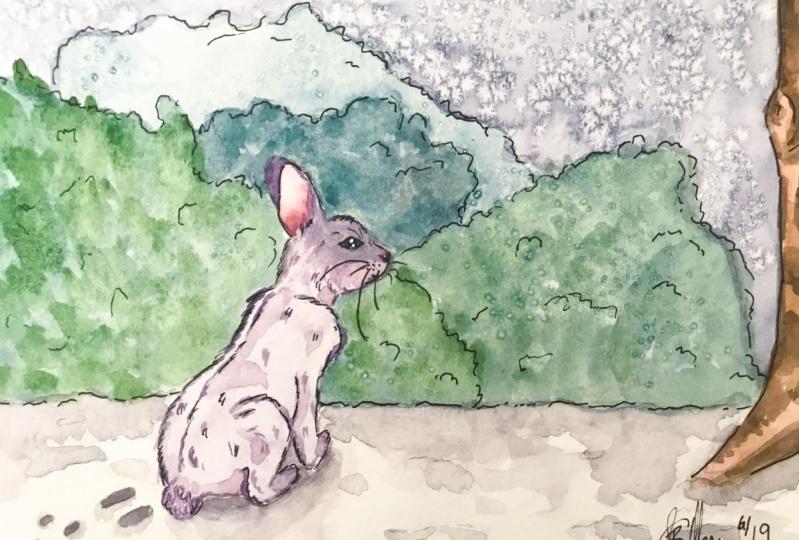 Watercolour Exploration Bunny