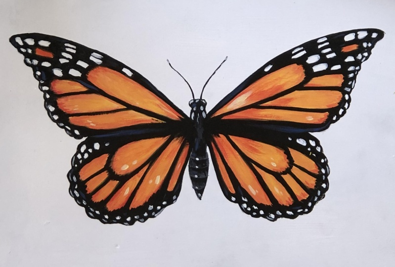 Painted Monarch Butterfly