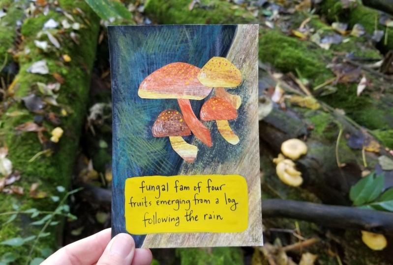Collage fungi