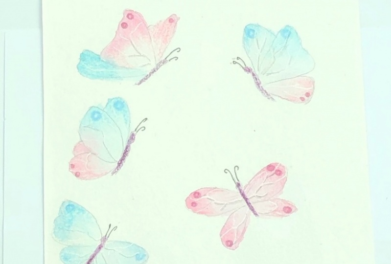 Butterflies in watercolor and coloured pencil
