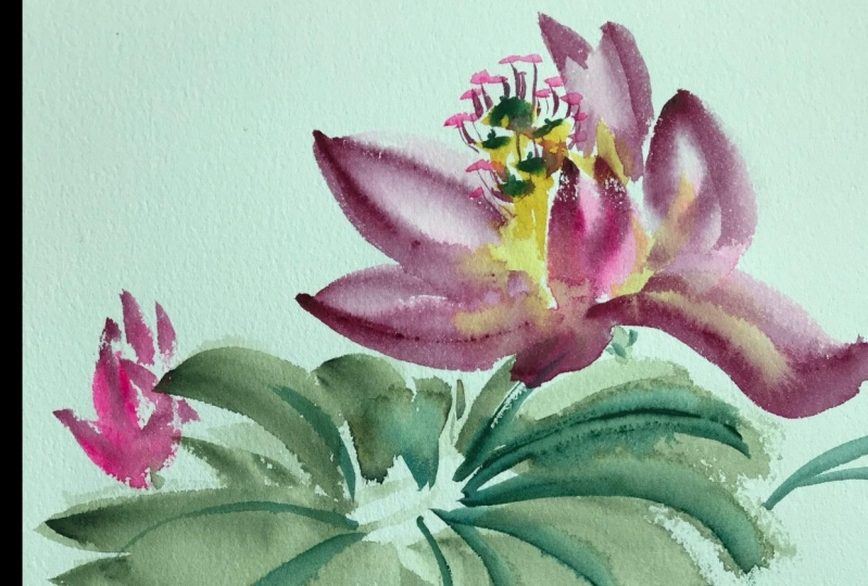 Lotus Flower with Watercolor
