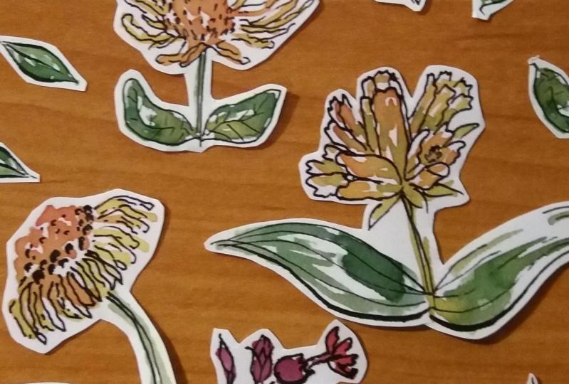 Spring flowers sticker set